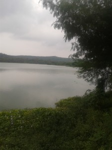 at Pashan Lake Pune...
